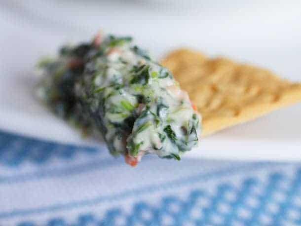 Gluten-free spinach dip on cracker.