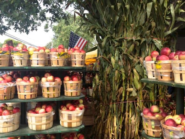Apples in baskets being sold at a farm stand.