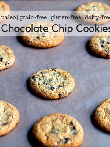 Paleo chocolate chip cookies on a pan.